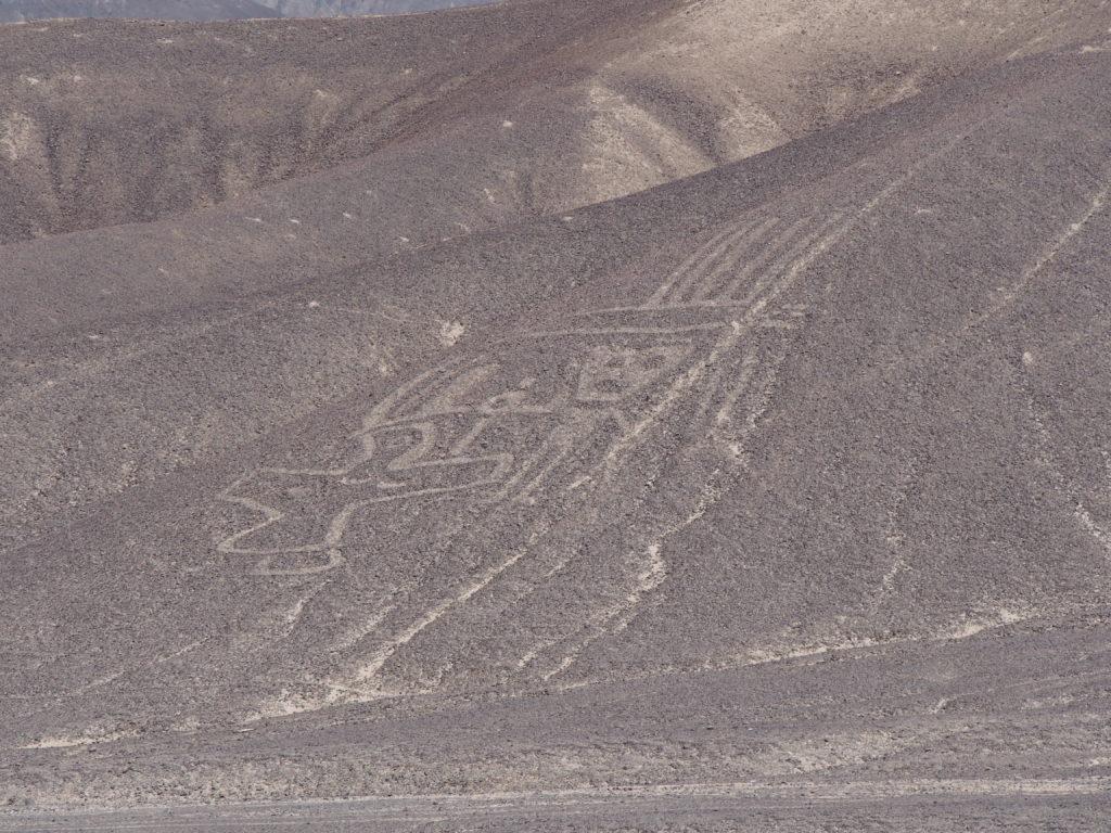 Lignes de Palpa au cours du circuit autour de Nazca