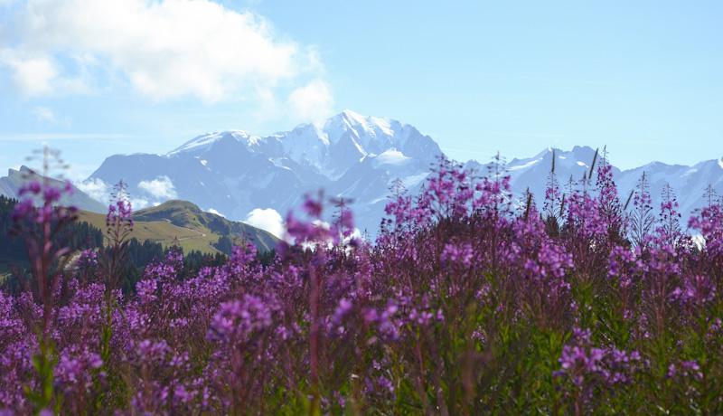 Road trip Haute Savoie - Savoie Mont Blanc