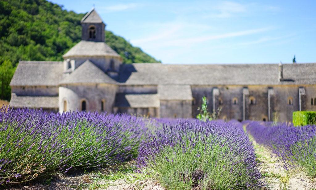Provence - Abbaye Notre Dame de Sénanque