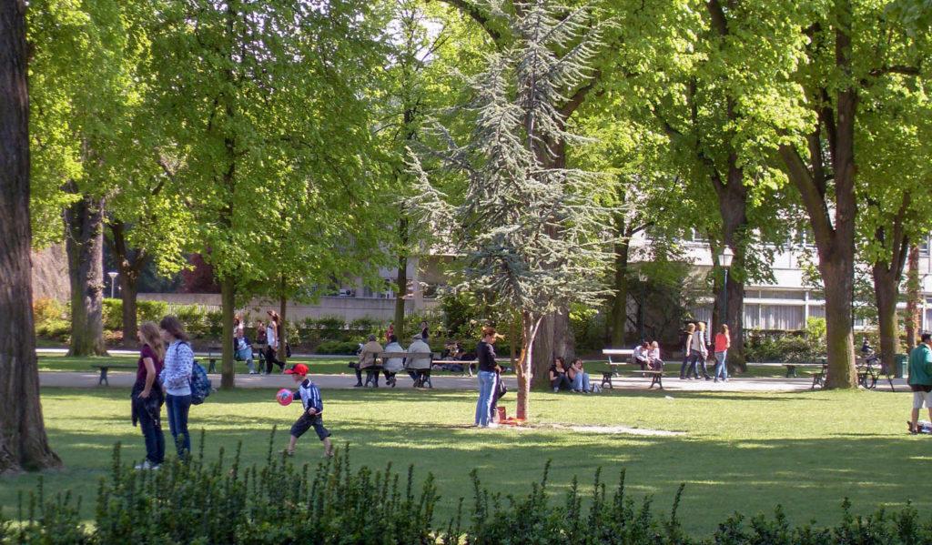 L'Alsace avec un chien - Meilleur hôtel acceptant les chiens à Colmar près du parc