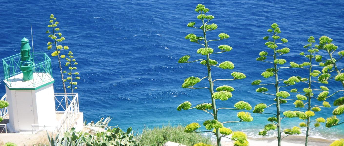 1 semaine en Corse - Itinéraire et carte tour de Corse en 7 jours