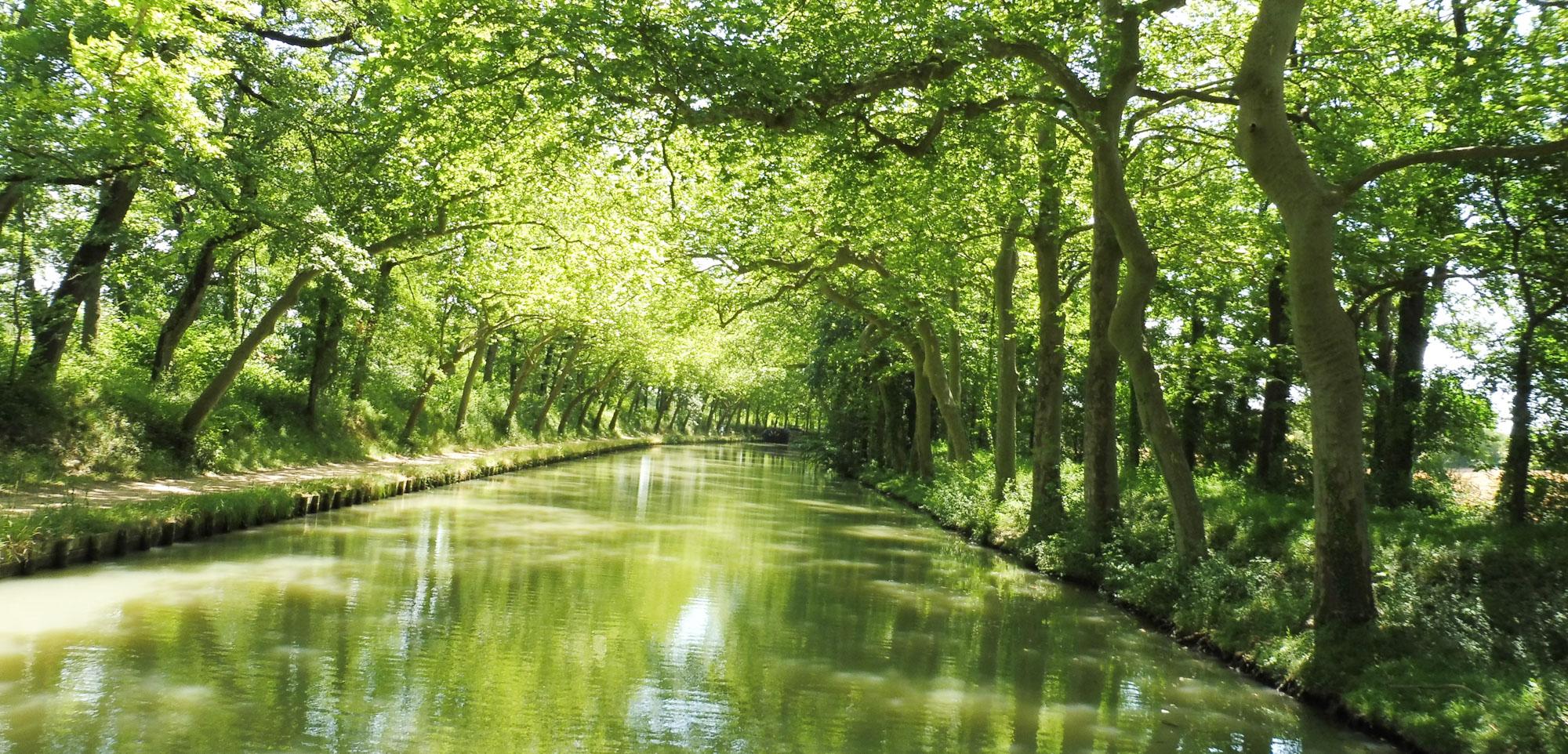 Que visiter autour de Carcassonne : Canal du Midi