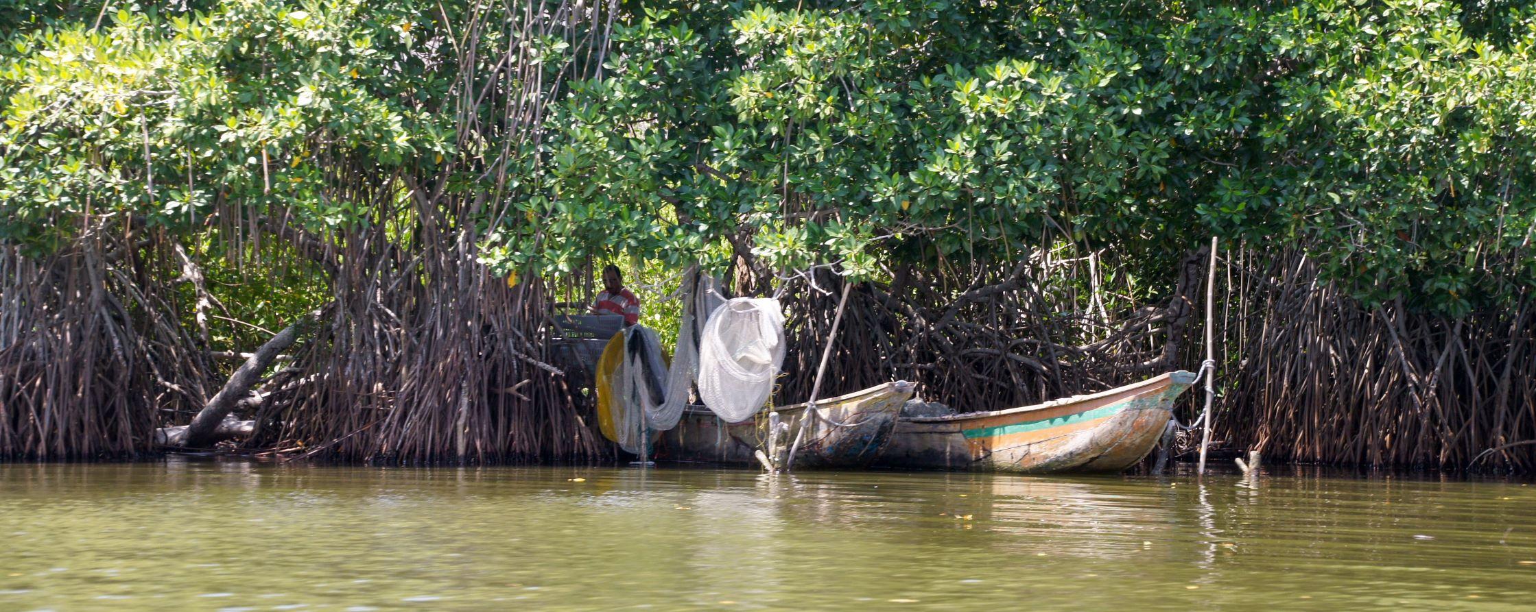 Pêcheurs sur la CIENAGA GRANDE DE MAGDALENA