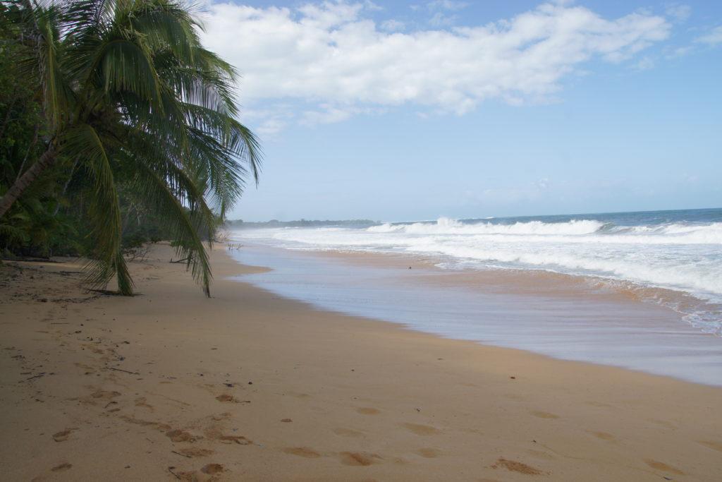 PLAYA BLUFF une des plus belles plages du panama