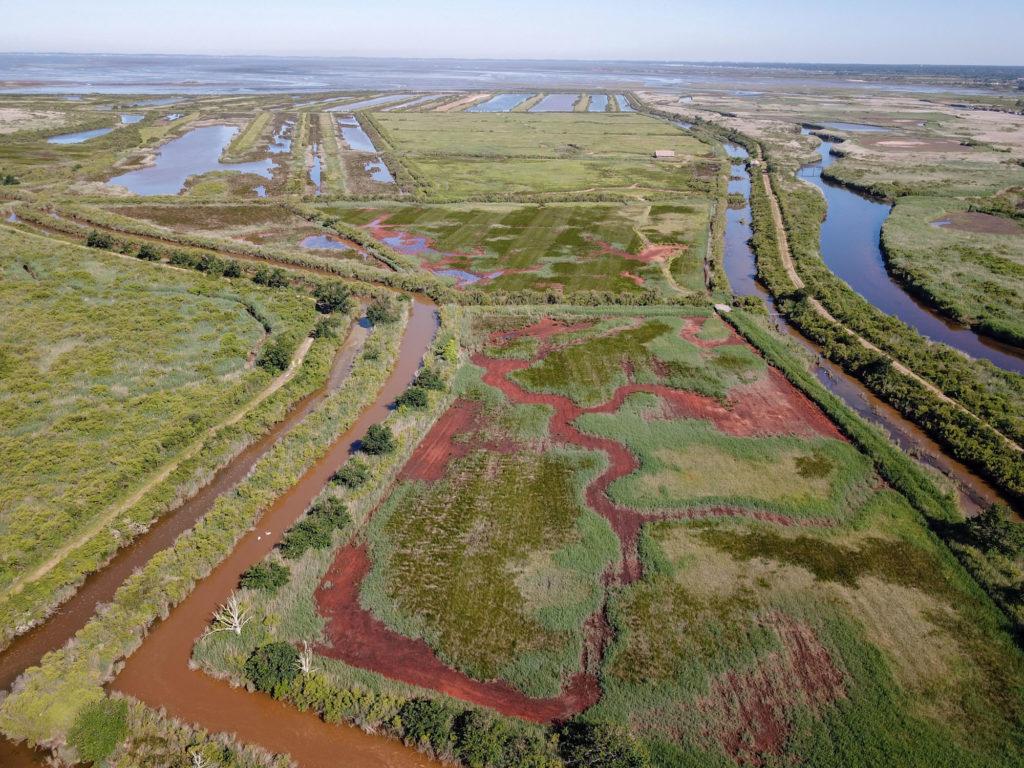 Réserve naturelle du Delta de la Leyre vu d'en haut