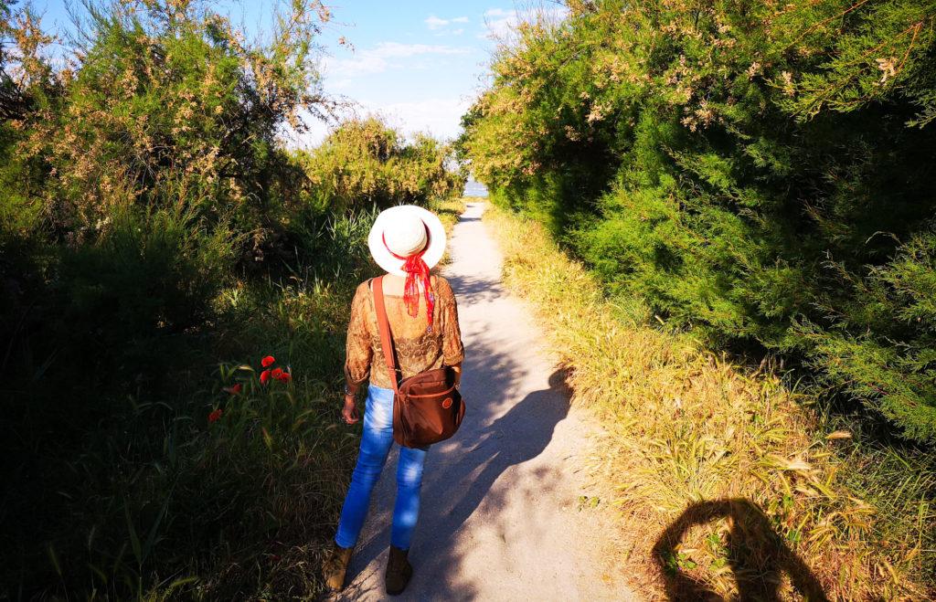 Visite du Bassin d'Arcachon et des réservoirs de Piraillan