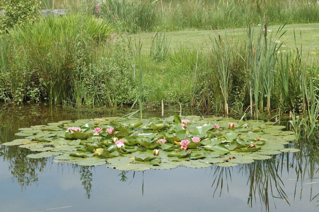 que faire à Lille : Jardin VAUBAN