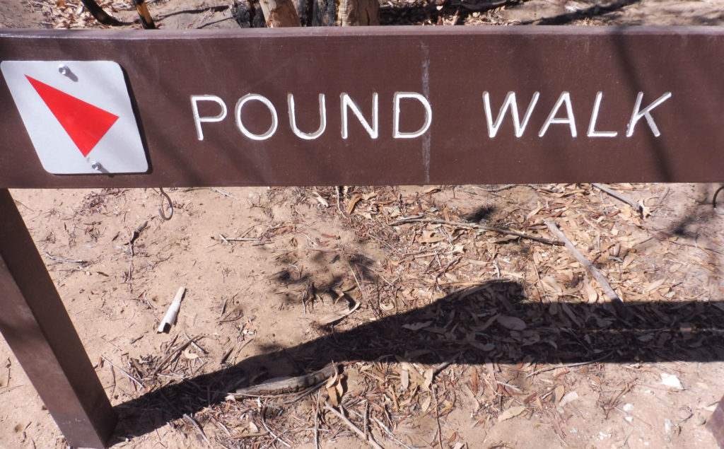 ormiston gorge Pound walk