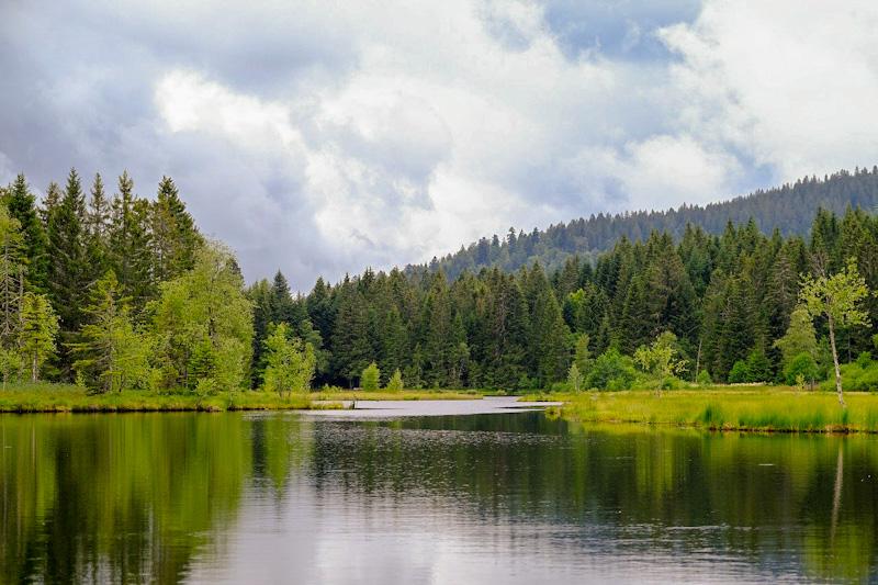 Que faire en Alsace : Le lac vert dans le massif des vosges