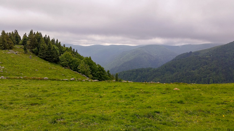 Que voir en Alsace : les sommets des Vosges