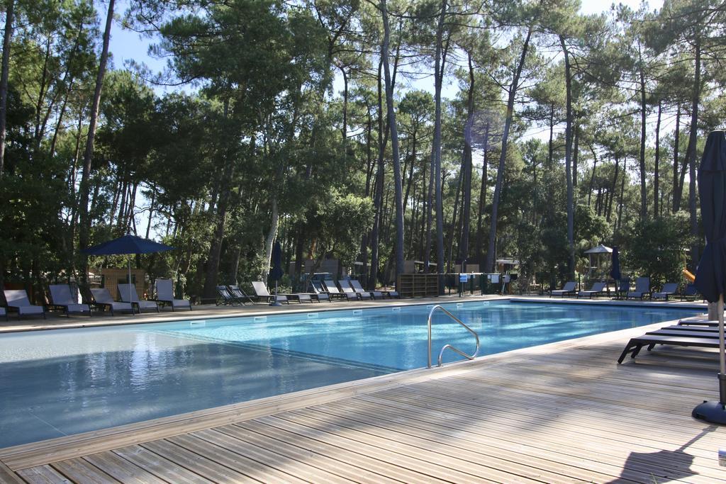 Location avec chien bord de mer et piscine