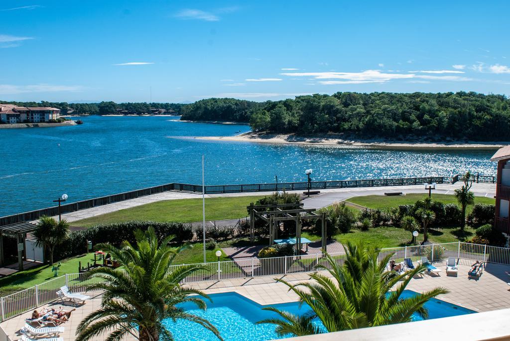 Location vacances avec chien et piscine océan Landes