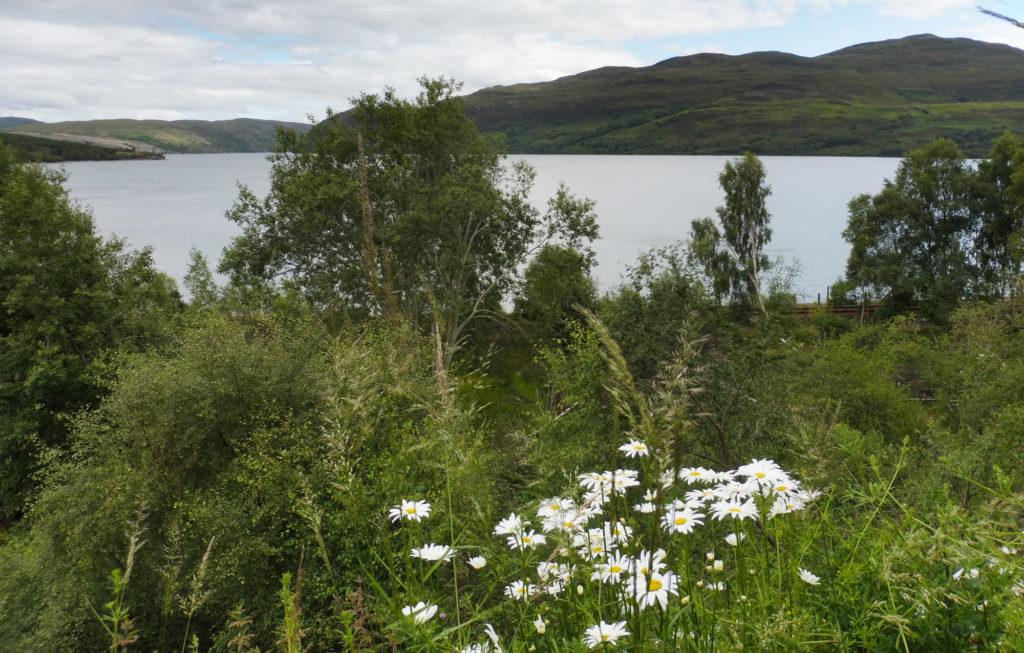Expérience du lac du loch ness en Ecosse