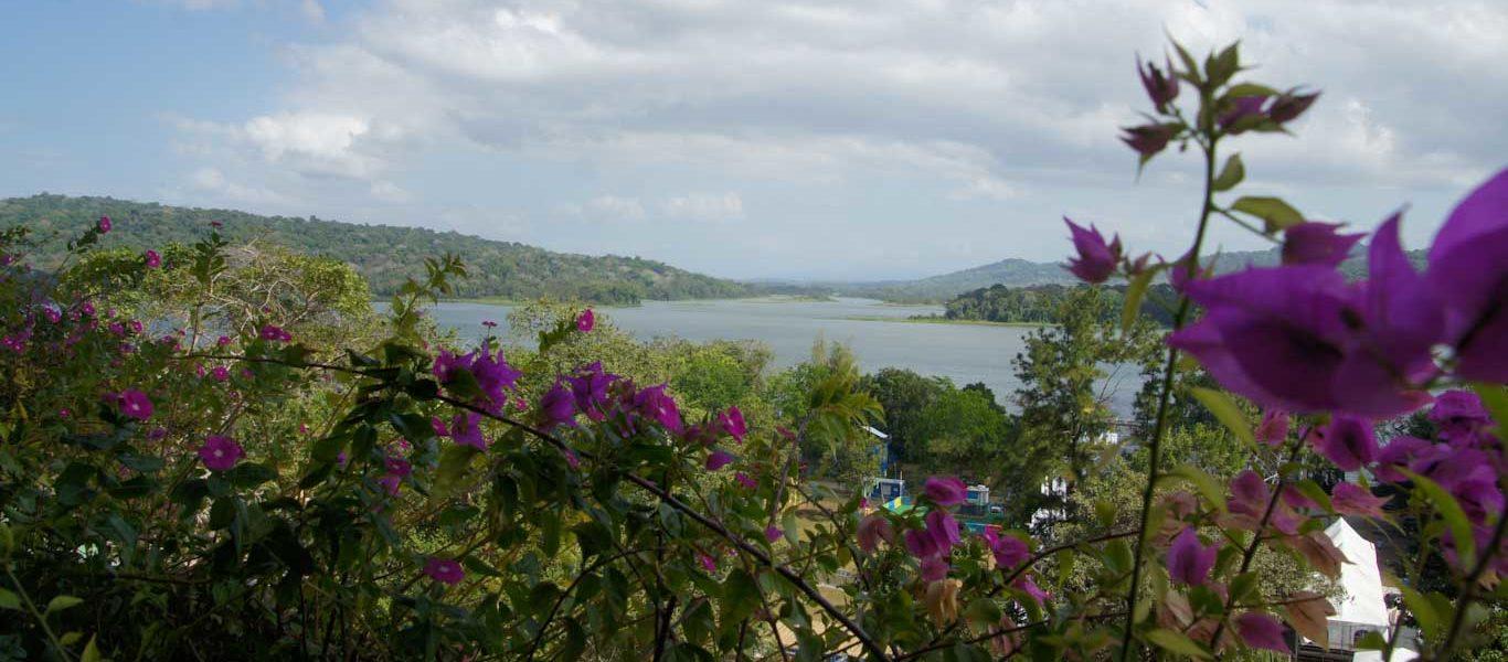 Que voir autour du Canal de Panama ? Le lac Gatun