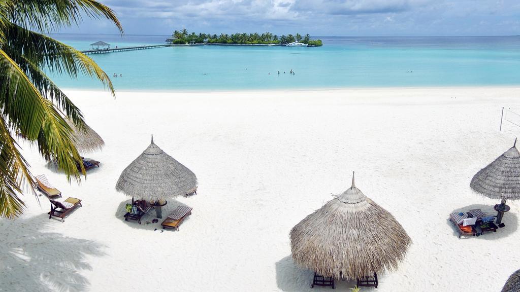 Qué isla ir en Maldivas para nadar con tiburones ballena y mantas