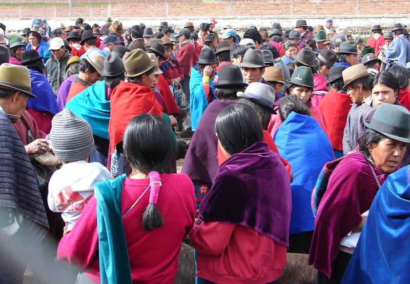 15 jours en Equateur - Quel type de circuit et d'agence responsable choisir ?