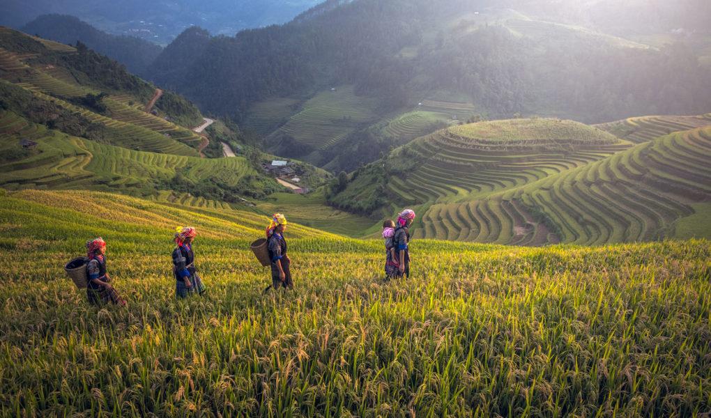Circuit 15 jours Laos Cambodge - Itinéraire sur 2 semaines avec carte et détail étapes