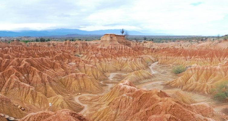 DESERT TATACOA