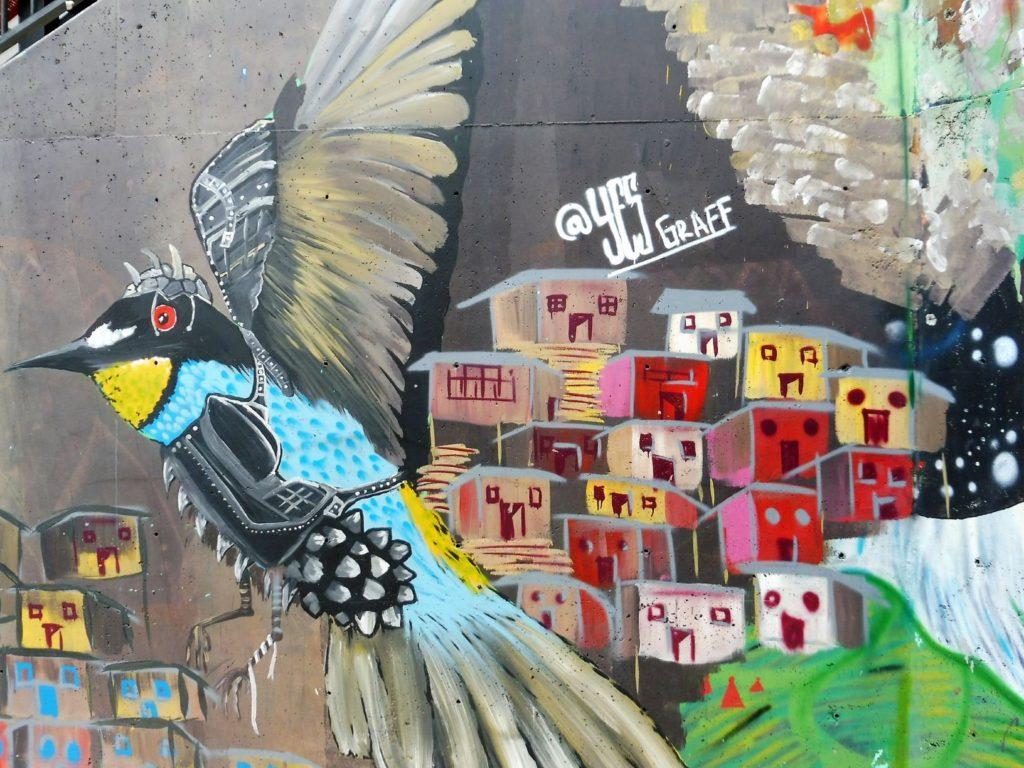 colibri comuna 13