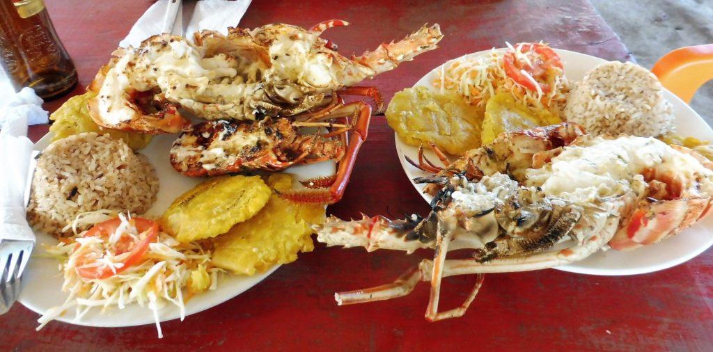 Langoustes sur l'Ile de MUCURA - Archipel San Bernardo