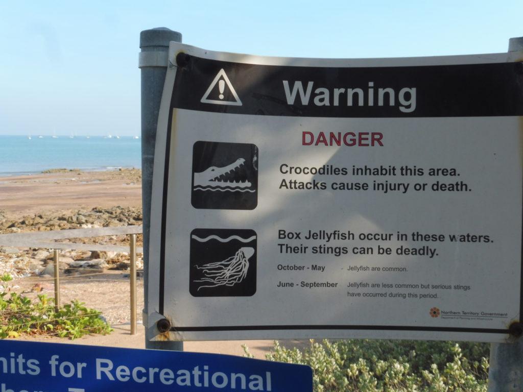 Darwin beach