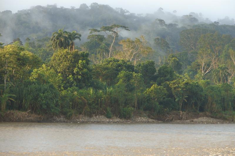 Circuit de 15 jours avec étape au Rio Napo dans la forêt amazonienne