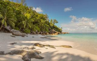 Seychelles en juin