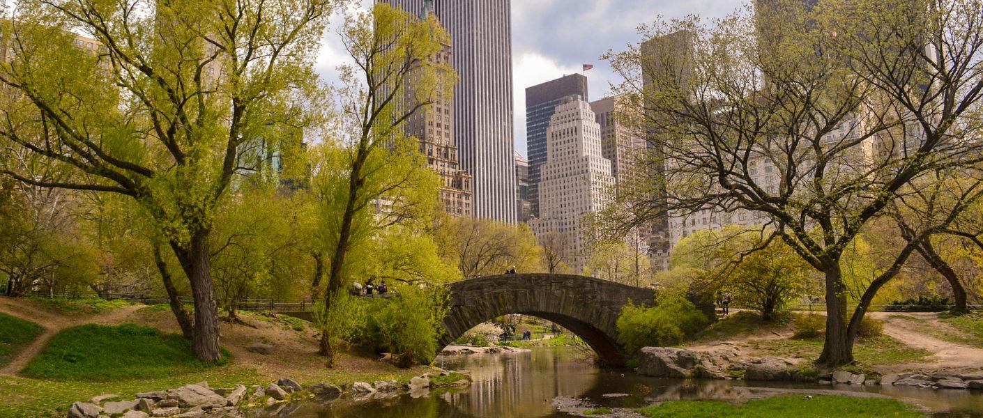 New York avec un chien - Meilleur hôtel acceptant les chiens à New York Manhattan