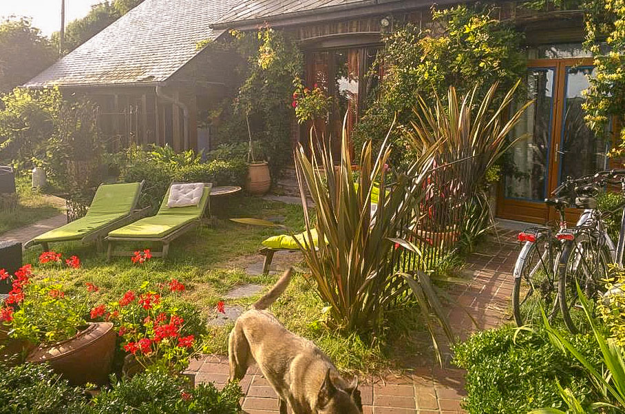 Meilleur hôtel avec un chien à Etretat Normandie