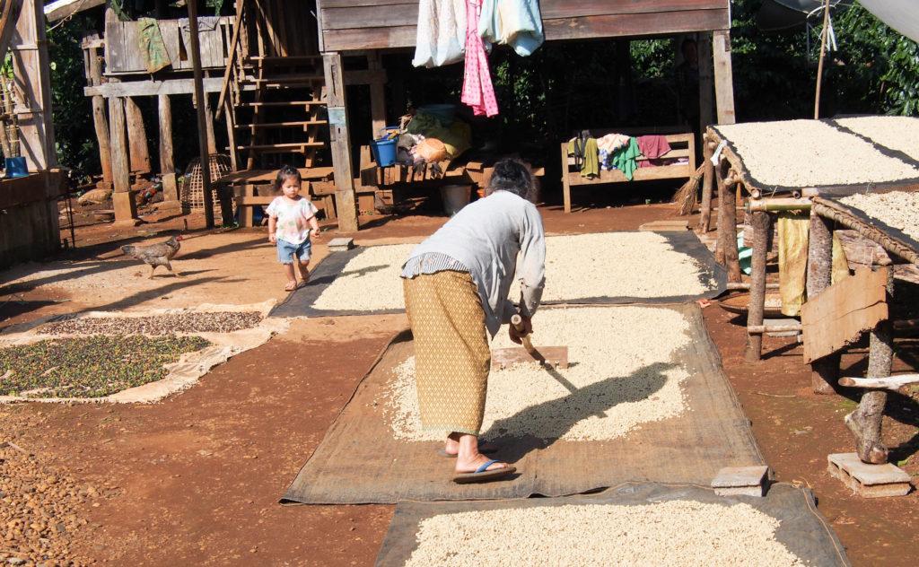 Ban Kok Phoung Taï  Katu village