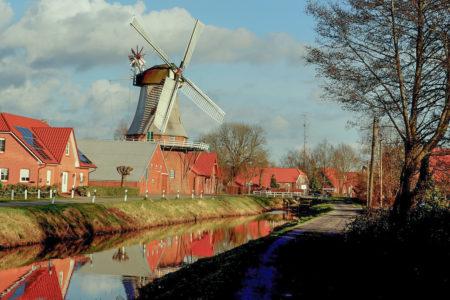 Que faire à Amsterdam en 4 jours ? Itinéraires city tour villages et champs de tulipes
