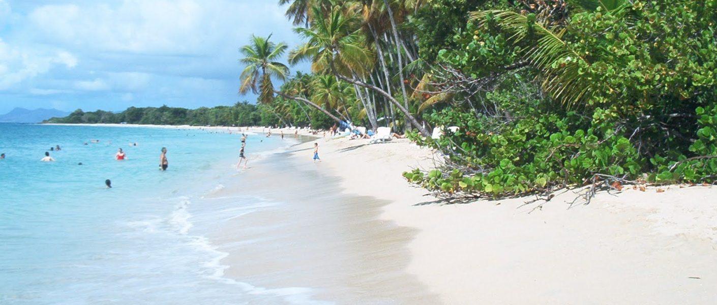 Lune de miel en Martinique – Destination idéale