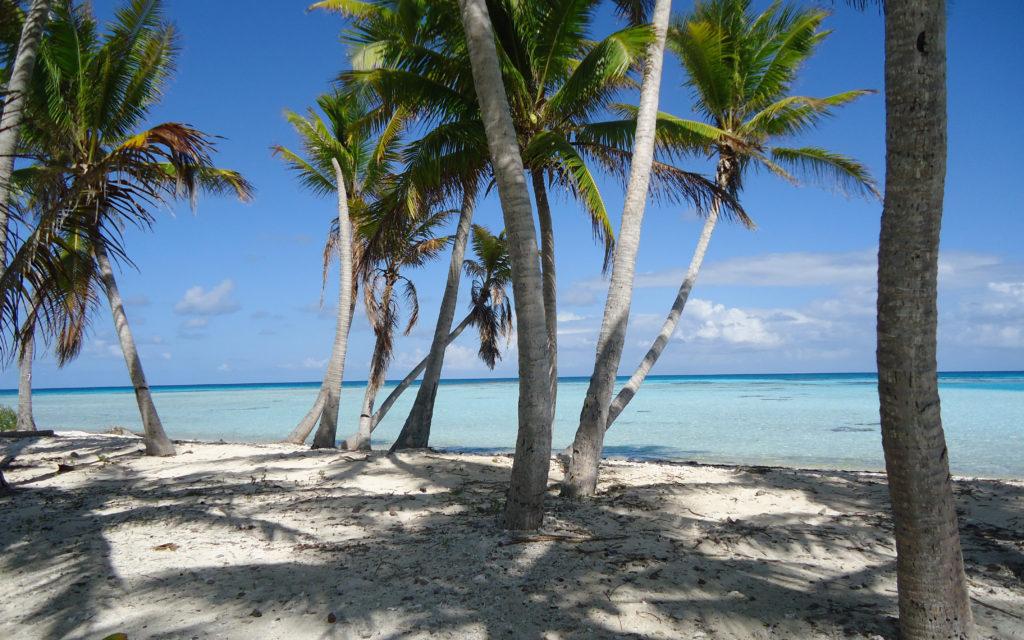 Ou partir en vacances en France - Meilleure destination Polynésie
